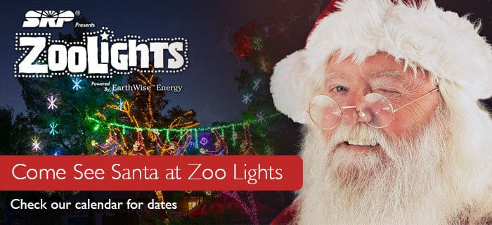 santa-zoo-lights